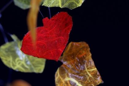 13-09-30-01c Autumn Aspen Isosceles